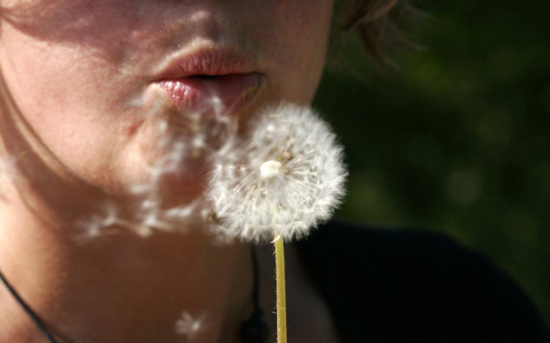 L'Organisation Mondiale de la Santé s'engage pour l'air